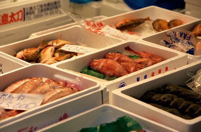 tsukiji111